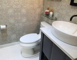 Cimarron comfort-height toilet; Desert-silver silestone countertop; Kestle Interiors Power Room Design